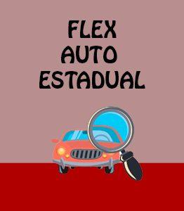 Flex Auto Estadual