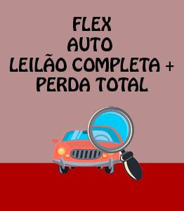 Flex Auto Leilão Completa PT