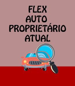 Flex Auto Proprietário Atual