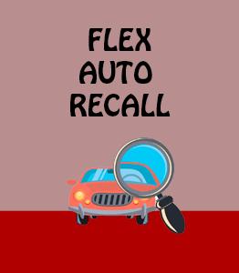 Flex Auto Recall