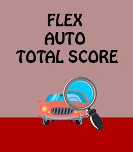 Flex Auto Total Score