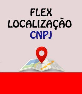 Flex Localizacao CNPJ