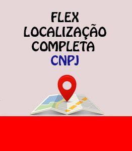 Flex Localização Completa CNPJ