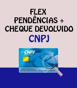 Flex Pendencias CCF CNPJ