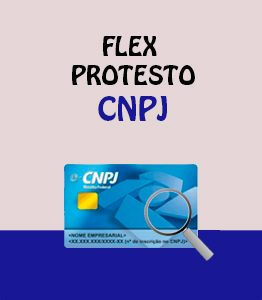 Flex Protesto CNPJ