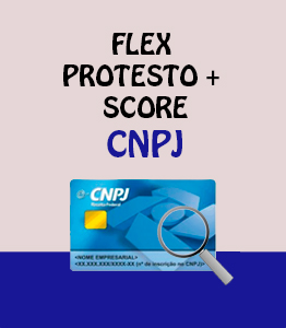 Flex Protesto Score CNPJ